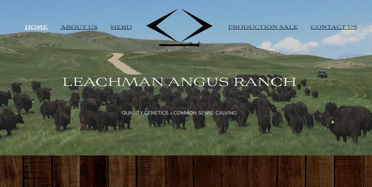Leachman Angus