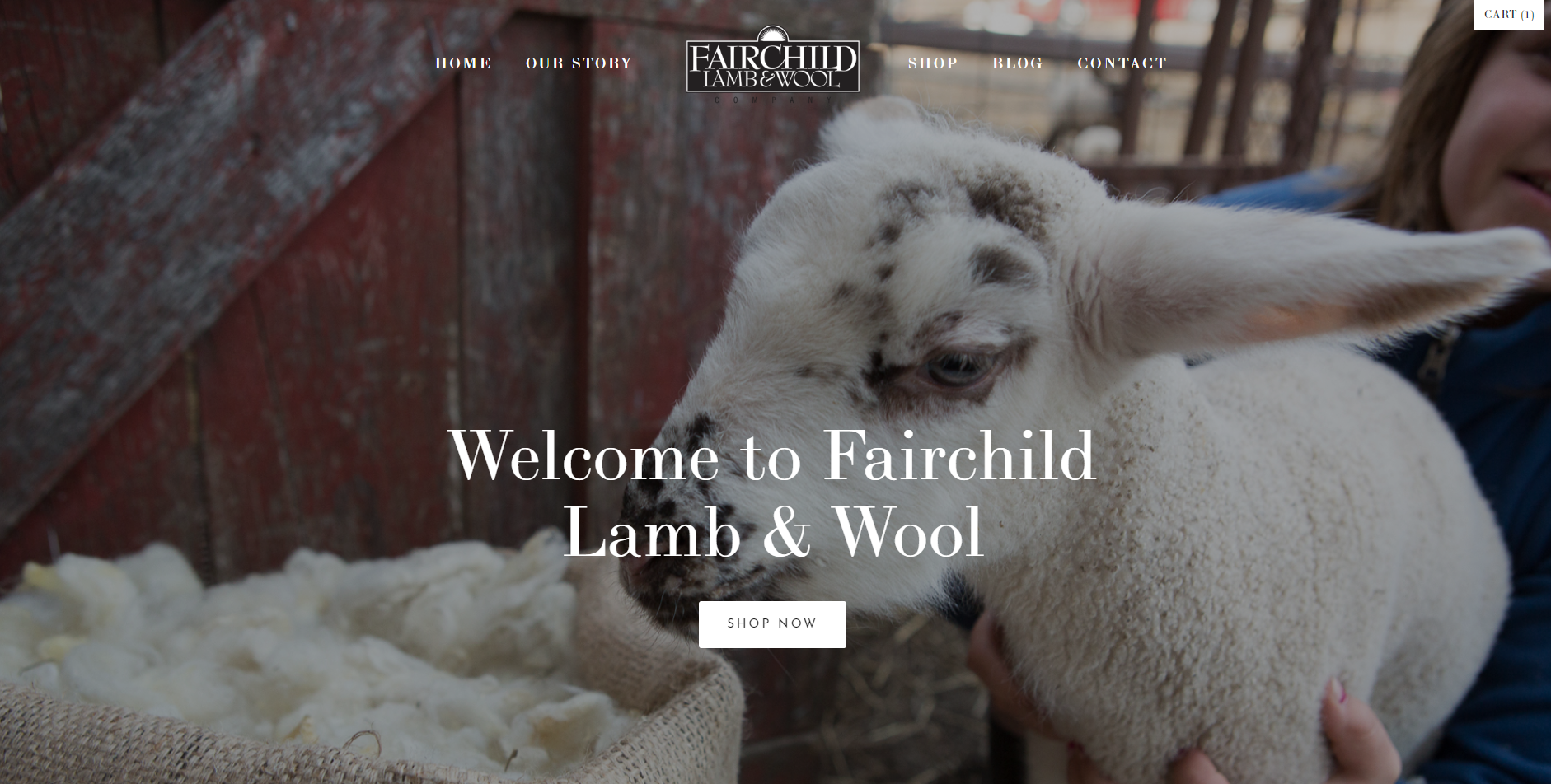 Fairchild Lamb & Wool