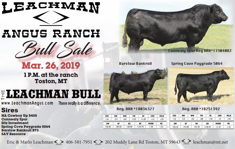 Leachman ad.PNG