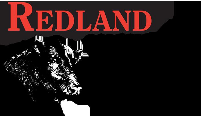 redland-retina-logo.png