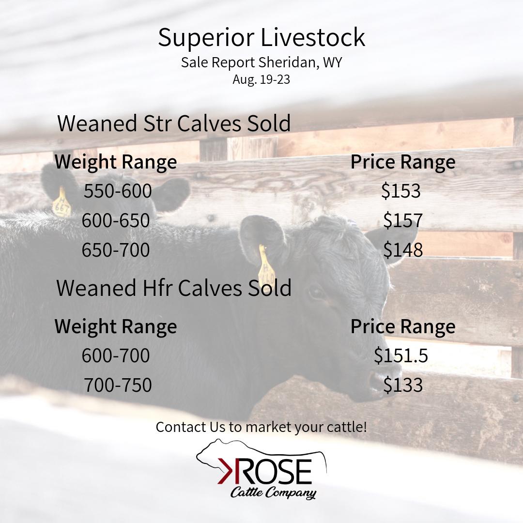 Weaned Steer Calves & Weaned Heifer Calves