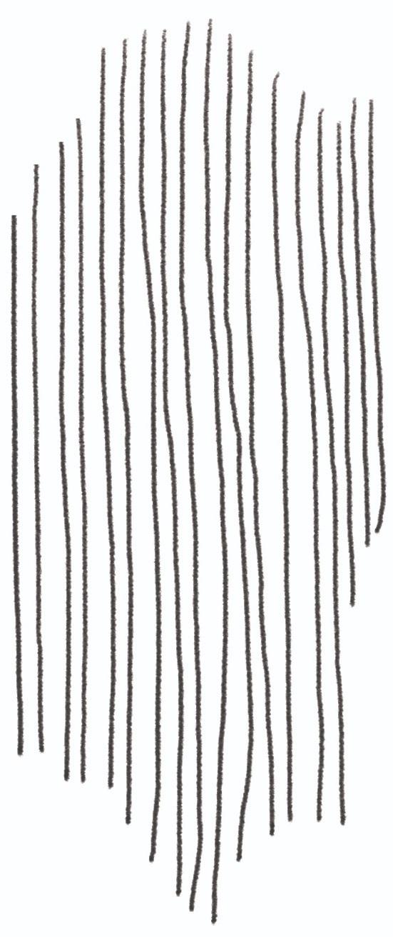 DrAnnaRoth_illustrations_PencilLines.jpg