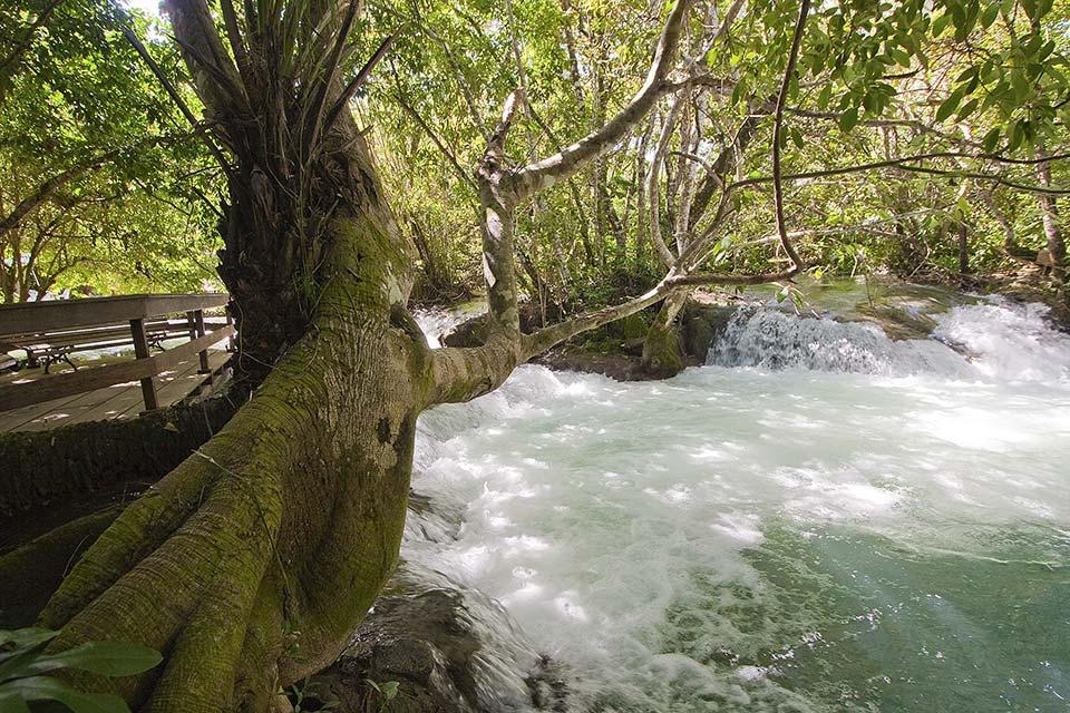 Beira do Rio Formoso -