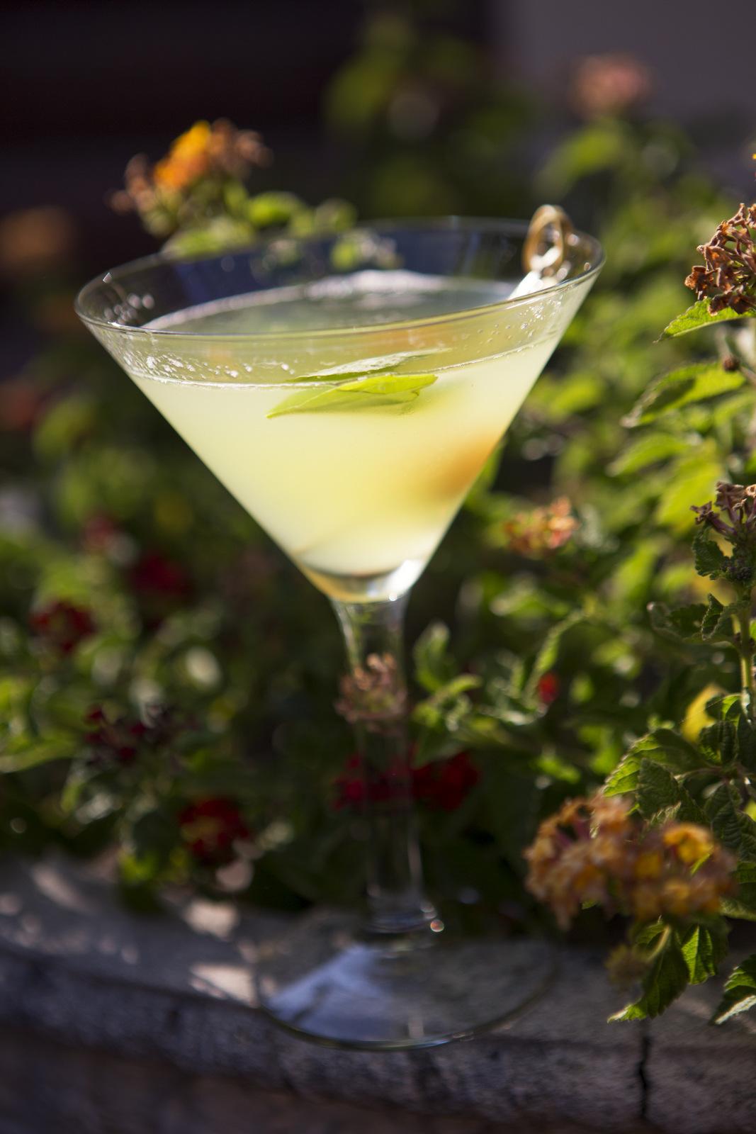 zac-martini.jpg
