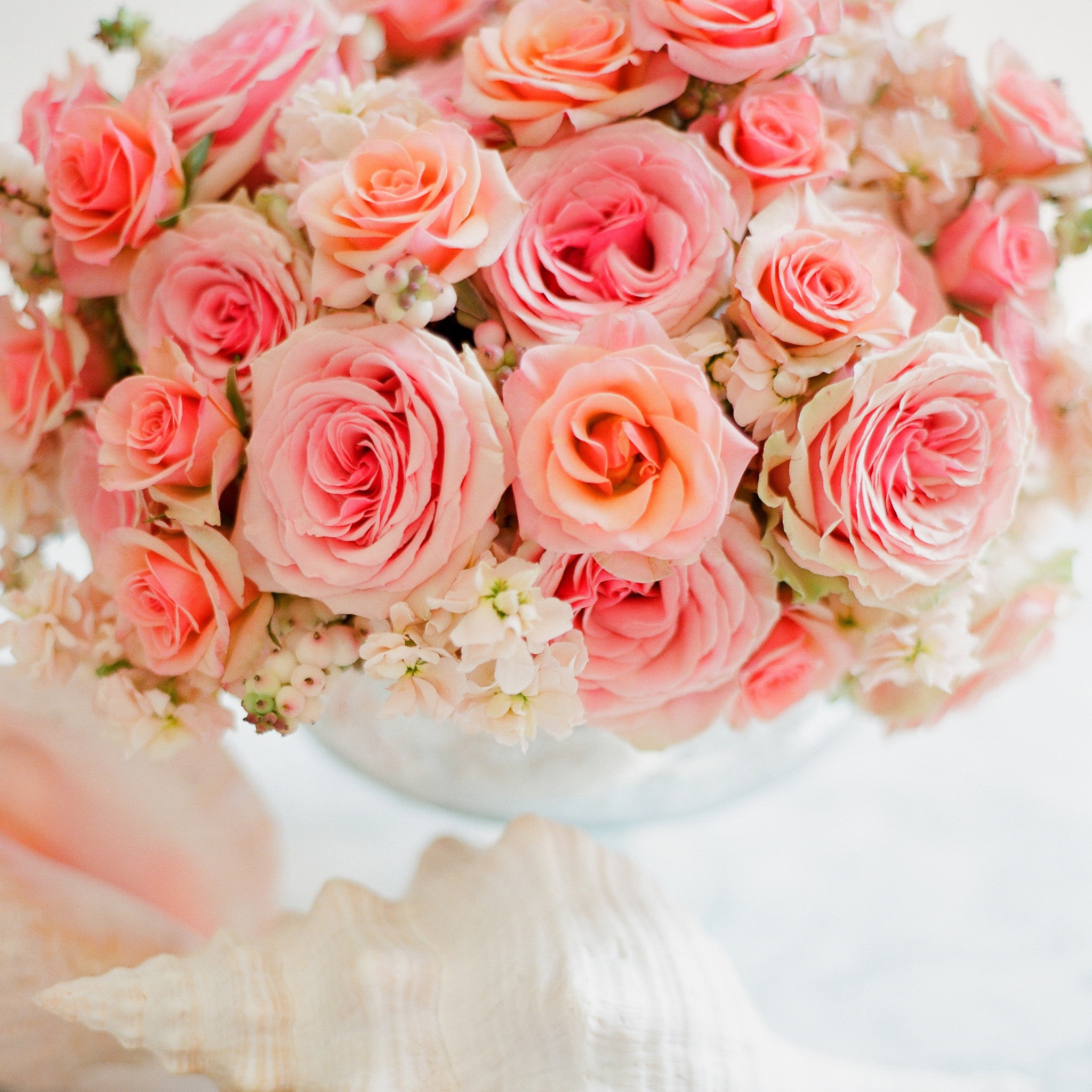 officeP-bouquet-0005.jpg