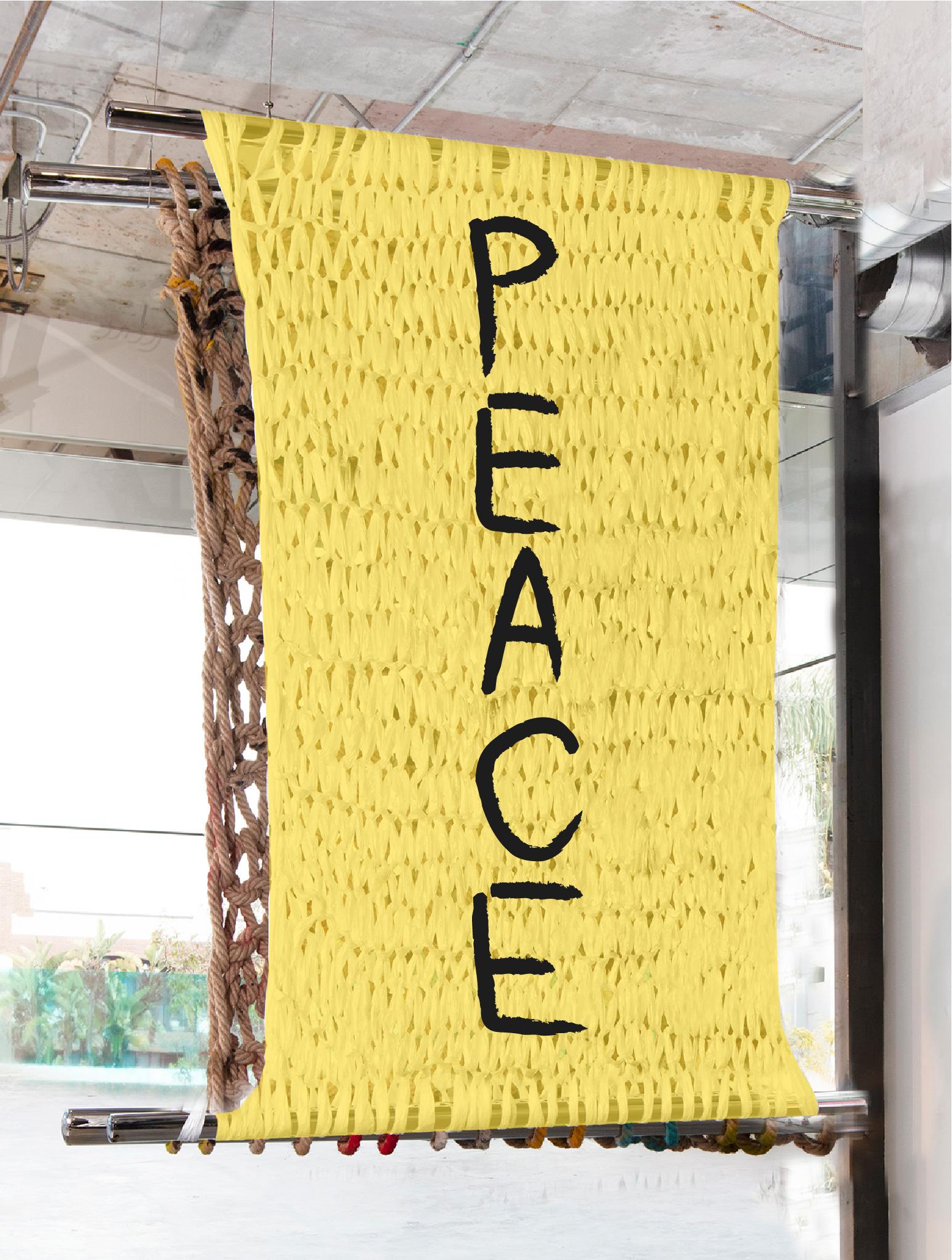 PEACE | 5 X 4' | PAINT ON PLASTIC