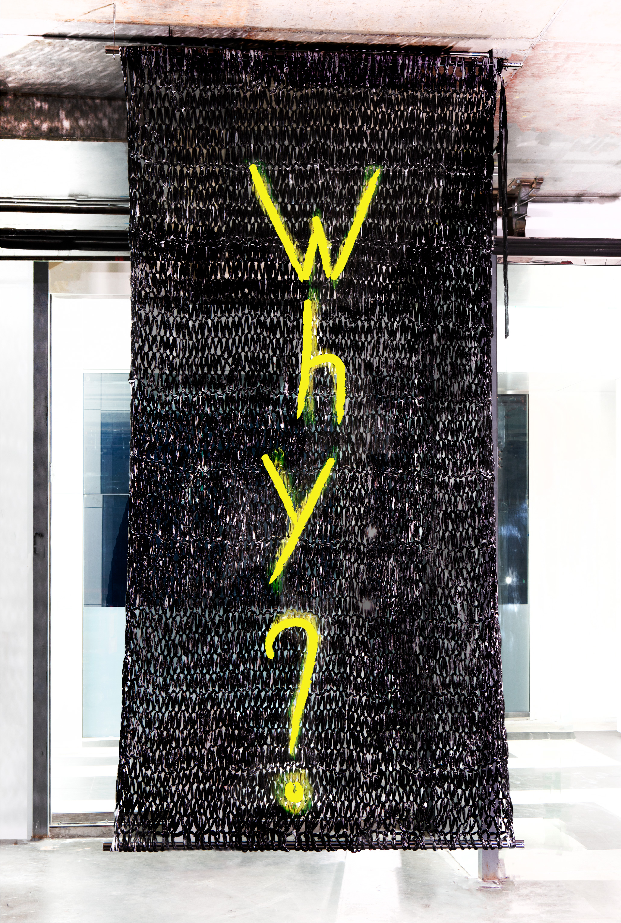 WHY? | 14 X 8' | PAINT ON PLASTIC