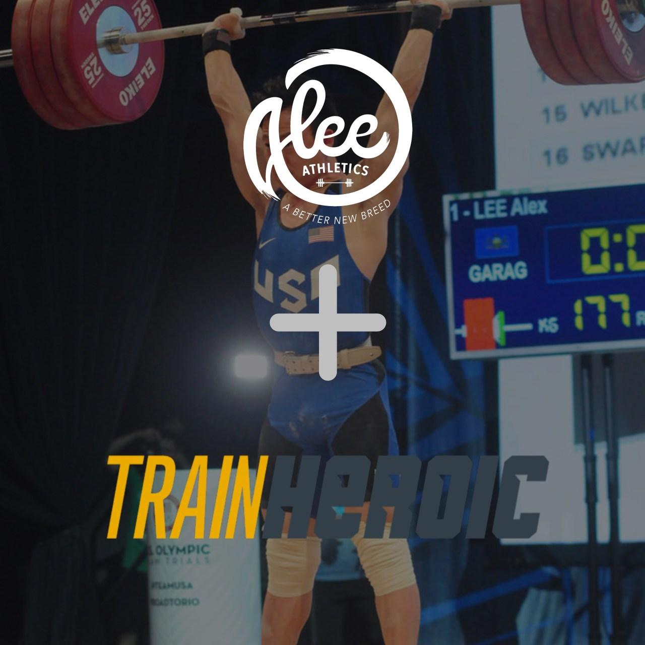 Alee+Train.jpg