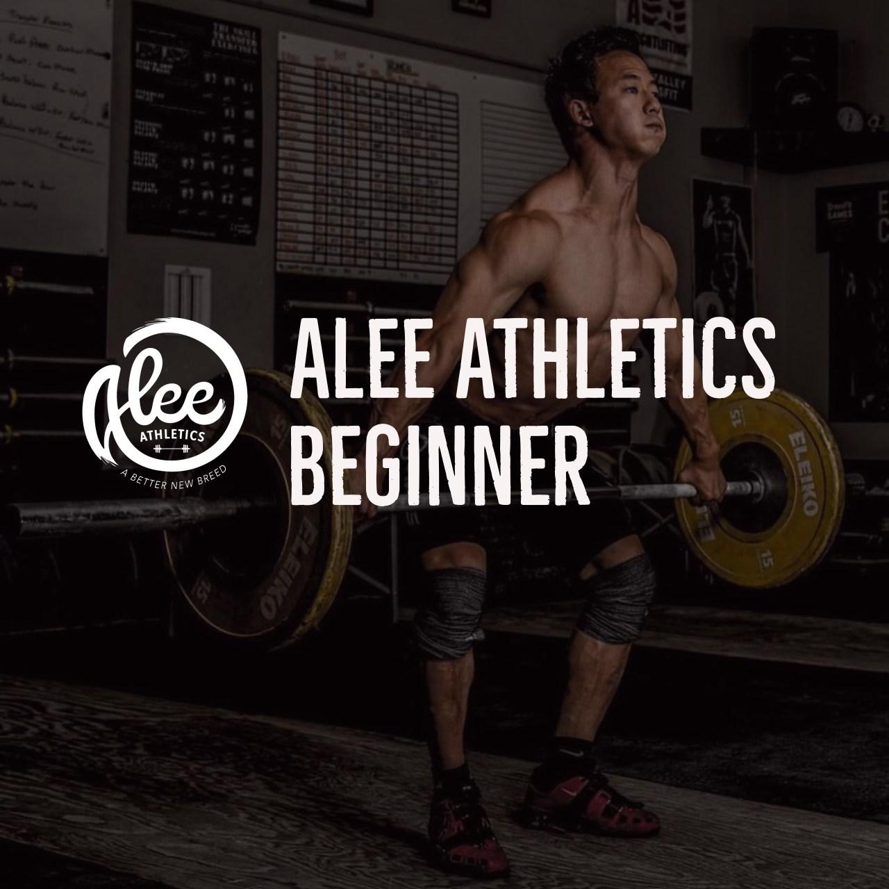 alee-begin.jpg
