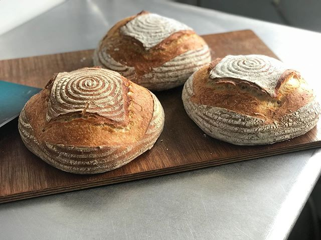 Some beautiful San Fran sourdough loaves, baked using the Dutch oven method. If you would like to learn how to make loaves exactly the same as these, at home we have another workshop coming up on the 21st of September. Link is in the bio😃