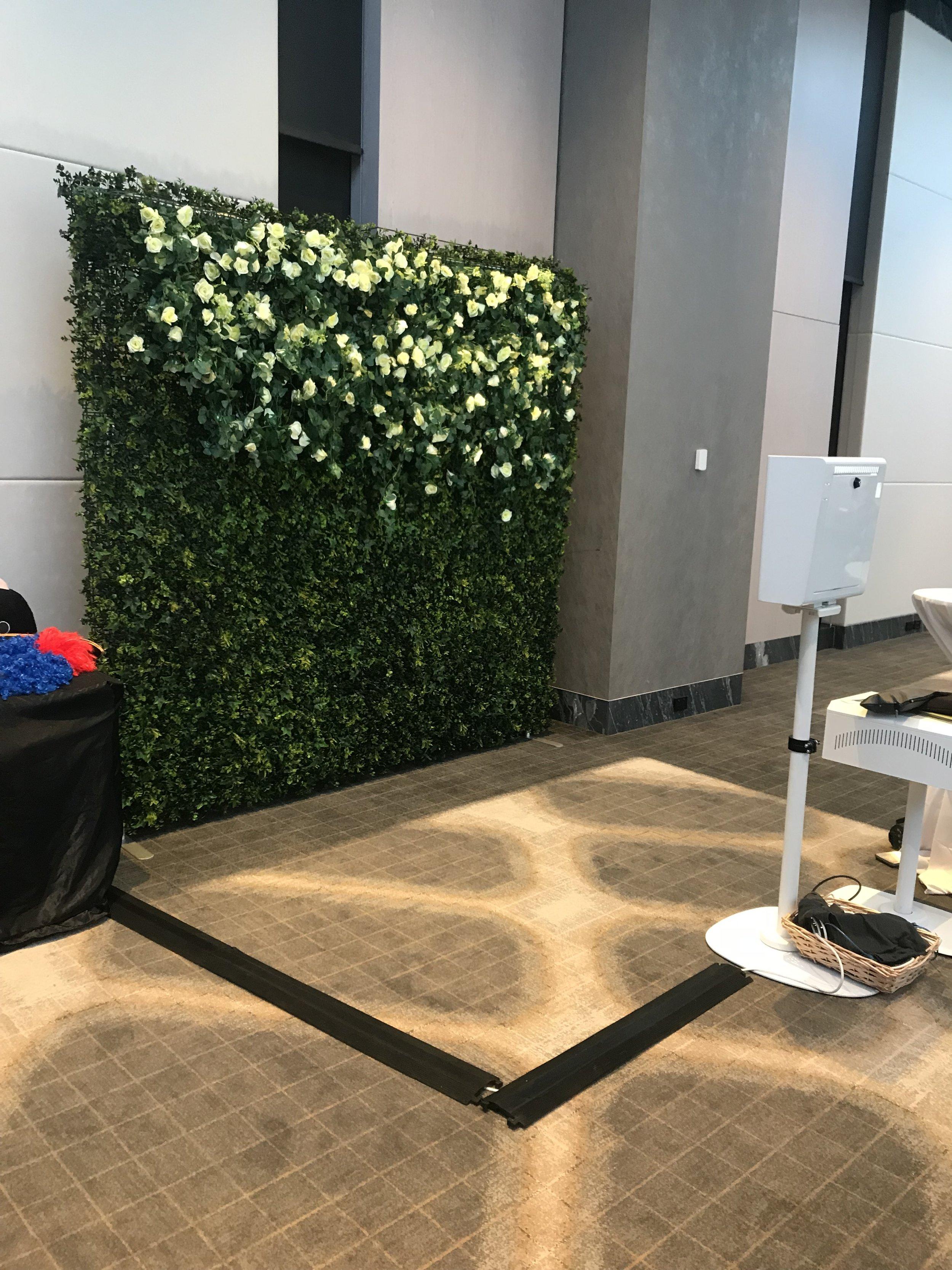 Emporium + Greenery Wall