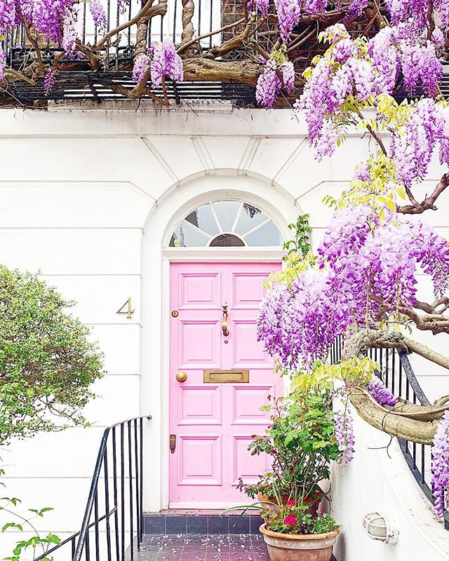 More wisteria inspiration! photo by @londonispink + + + + + #london #wisteria