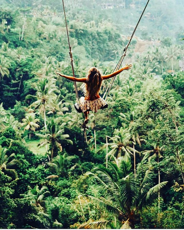 Swinging above the canopy - photo by @indyblue_ + + + + + + #rainforest #swing