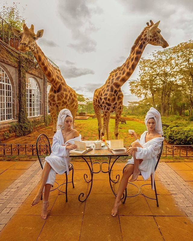 Special guests for tea - photo by @badboi + + + + + #giraffe #animalprint #tea