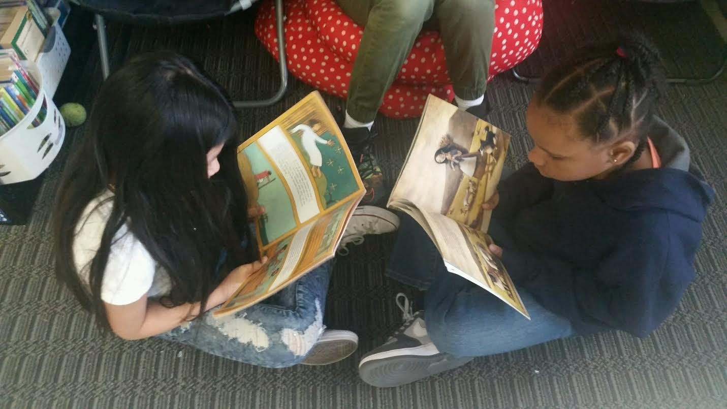 Reading partnerships are another way to offer choice in your classroom. These reading partnerships allows students to choose books that are interesting to them.