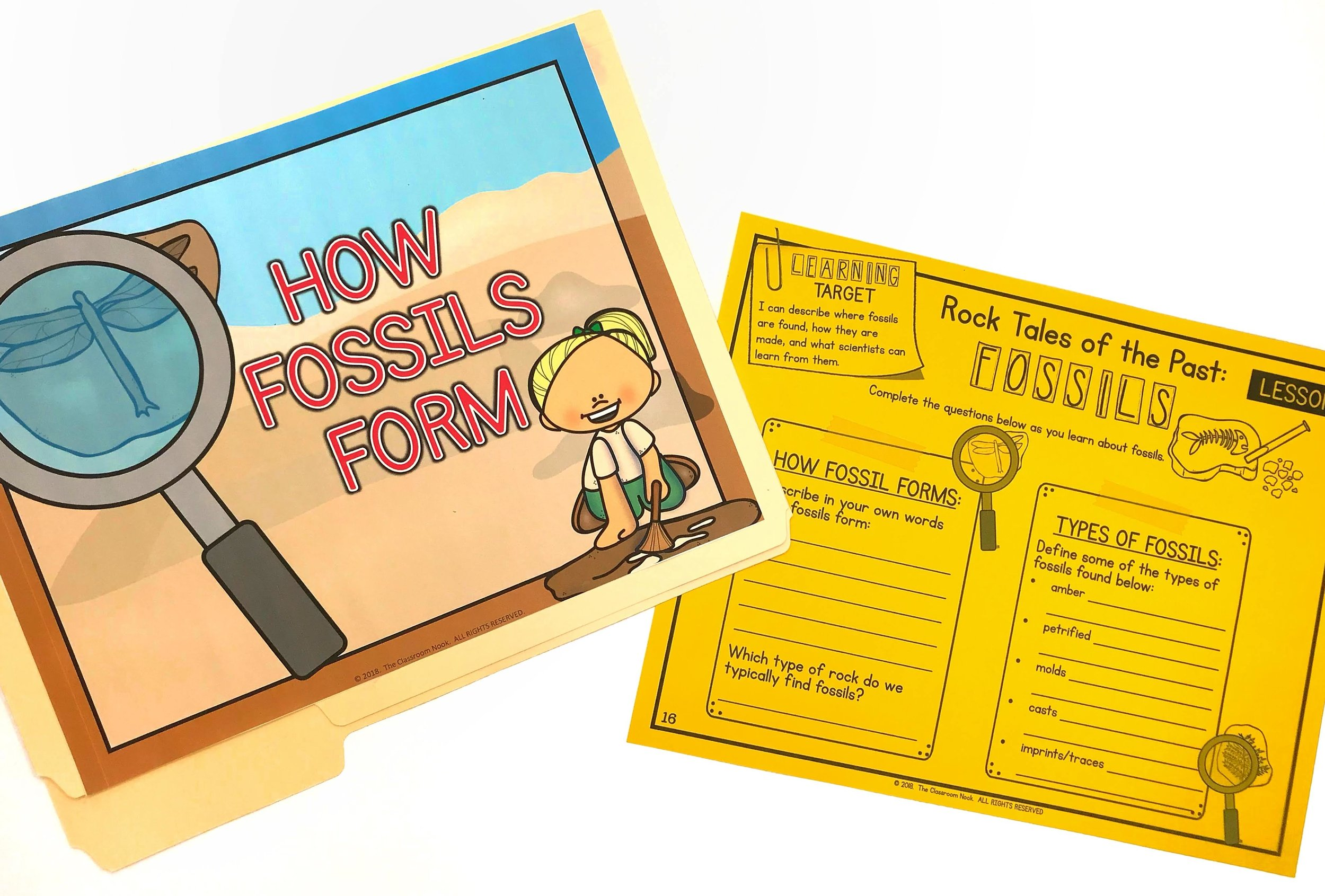 Fossil Discovery Folder