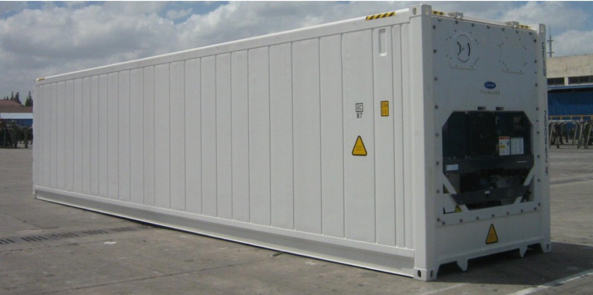 For Rental Or Sale - Delivered To You - Electric Cold Storage Containers