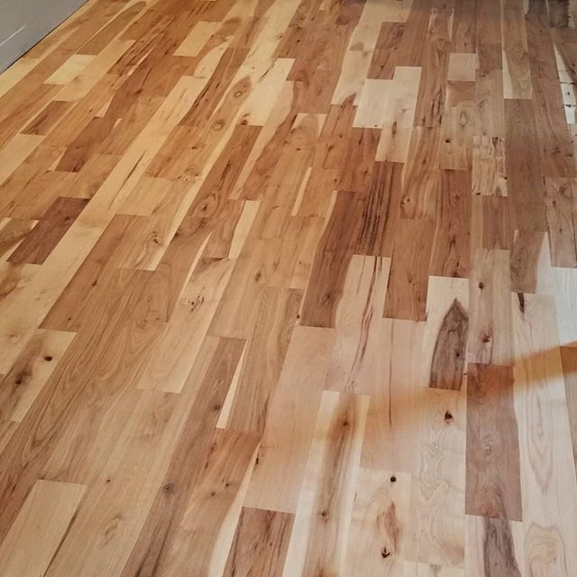 "5"" wide #1 common hickory.  #hardwoodflooring #stcharlesil #genevail #homeimprovement #remodeling #legendaryflooring #hickory #hickoryfloors #flooring #natural"