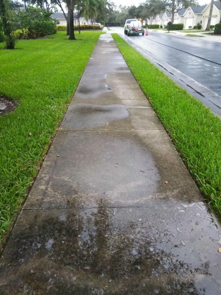 IBC Before Sidewalk.jpg