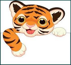 TigerCubAcademy.jpg