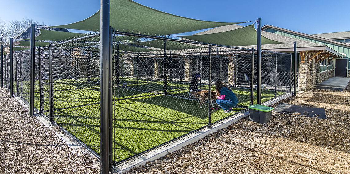 Creature Comforts Kennel