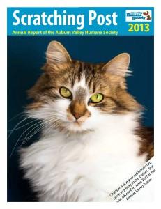 2013 AVHS Annual Report