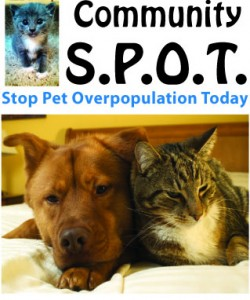 Program for low-cost dog and cat spay/neuter