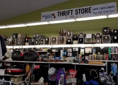 thrift store picture.jpg