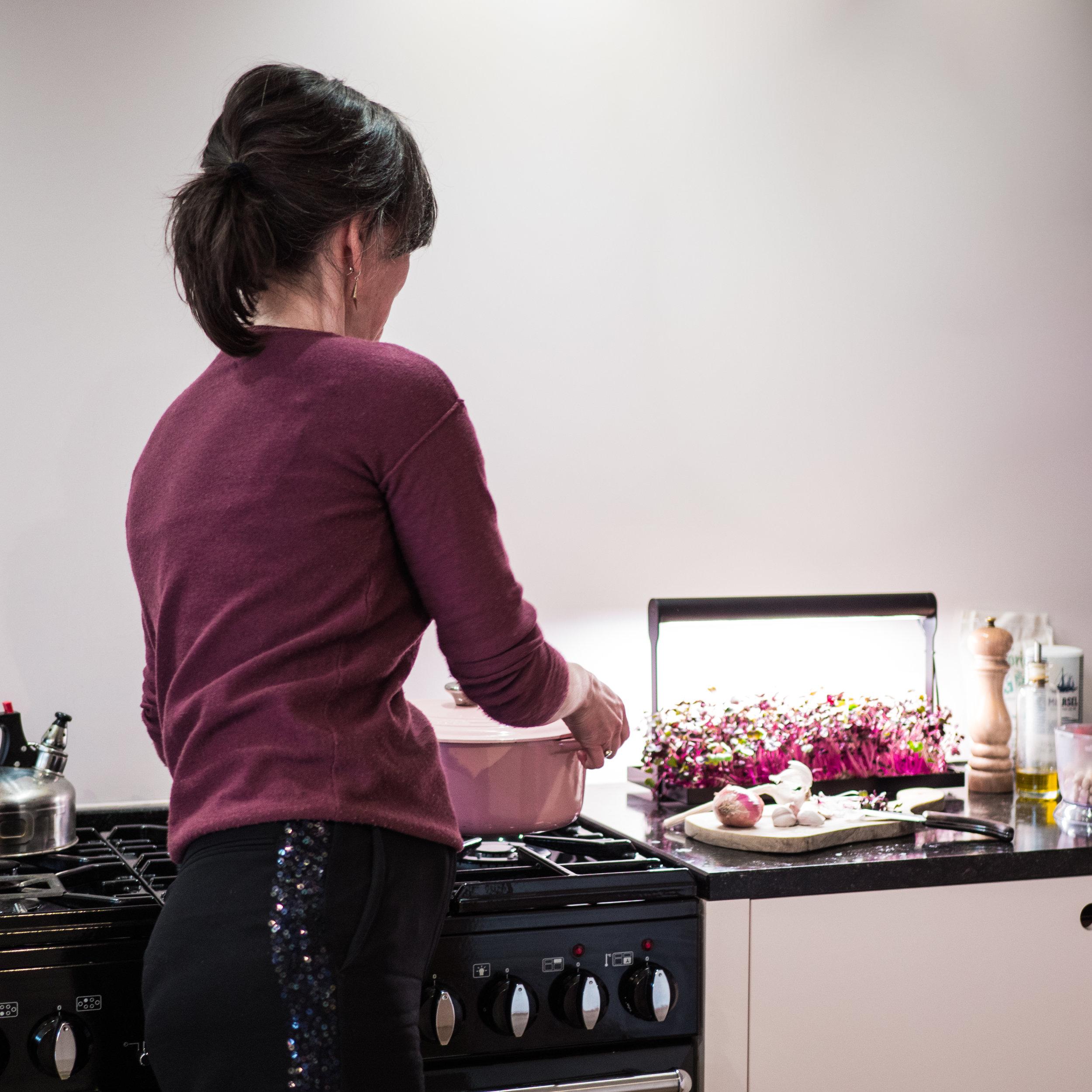 MicroFarm_kitchen.jpg