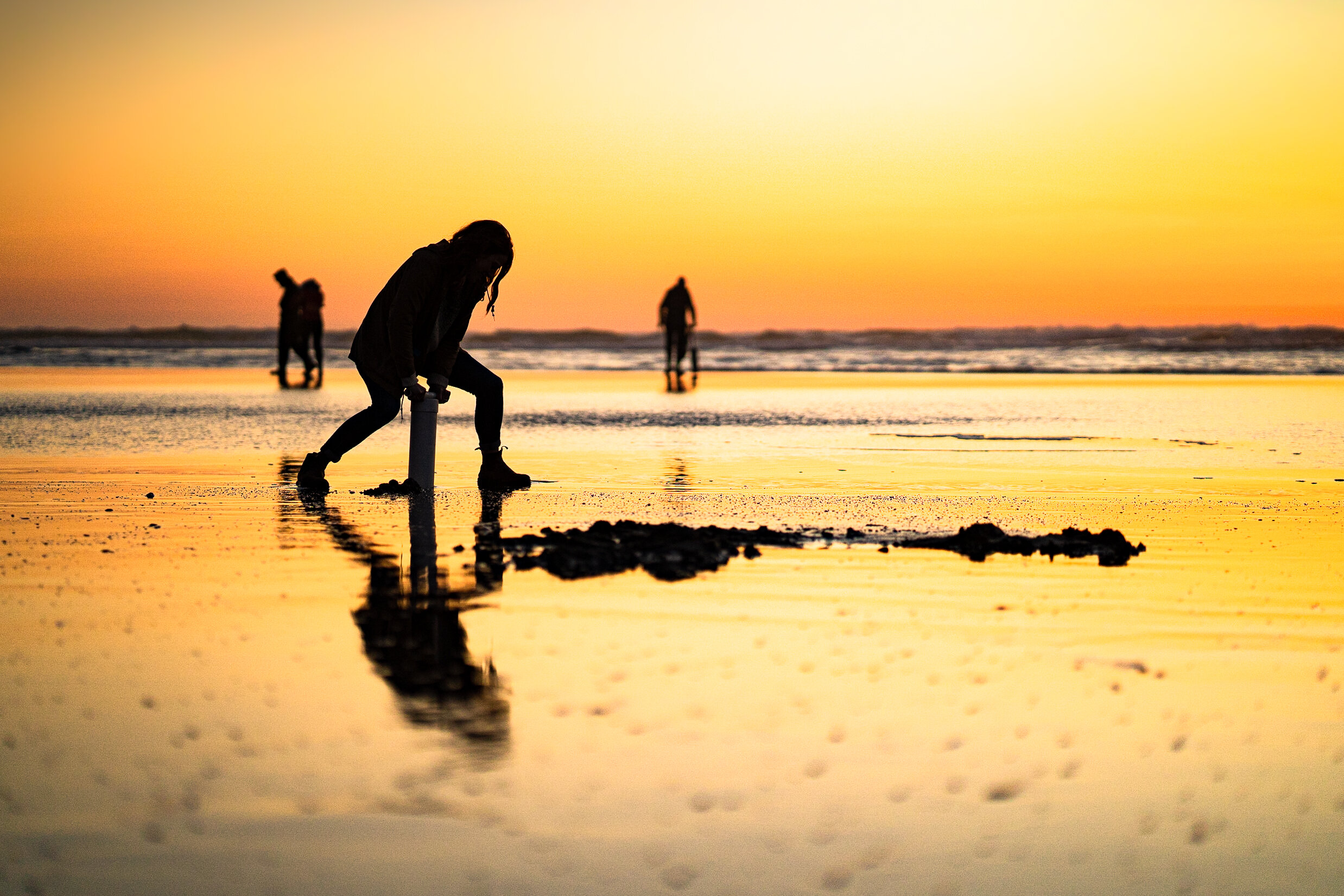Razor clam season is here! - It's about to get clammy in Westport