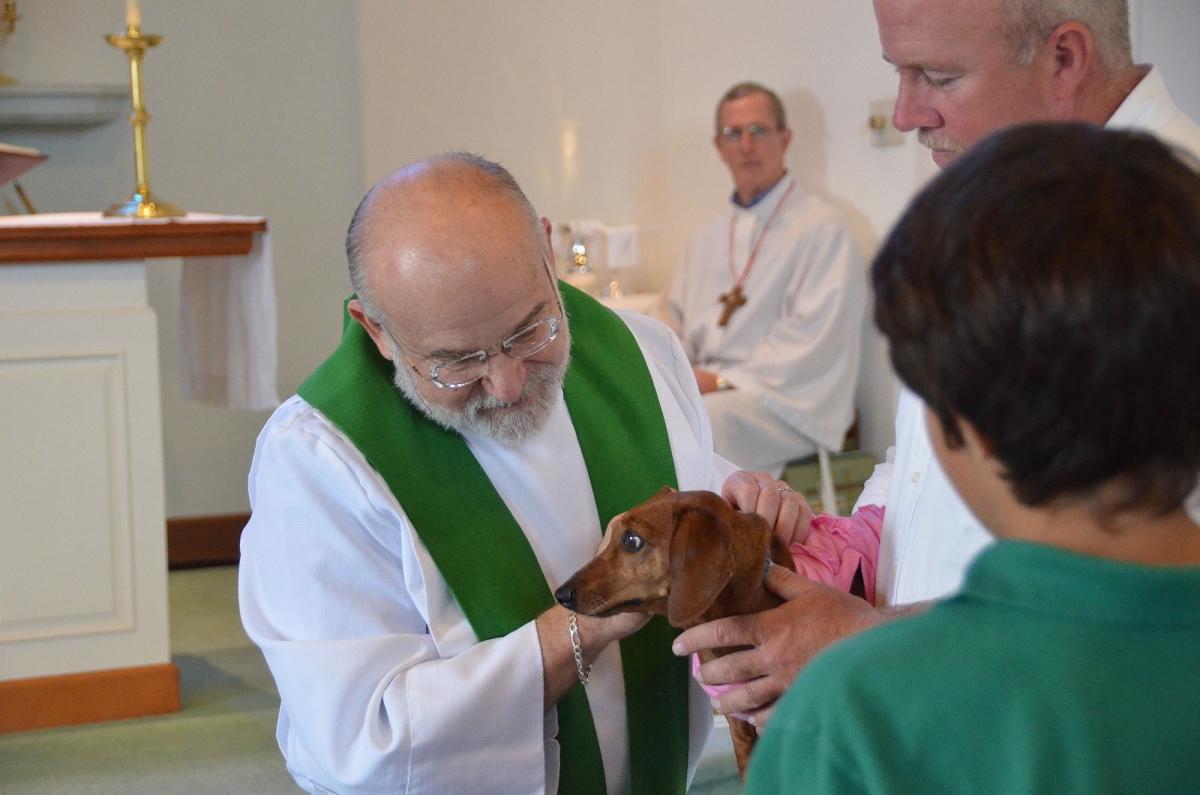 animal blessing 5.jpg