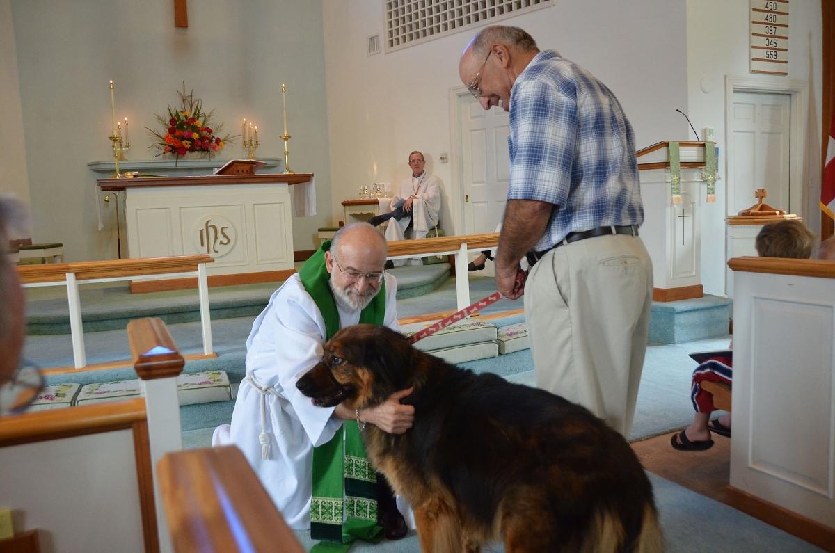 animal blessing 1.jpg