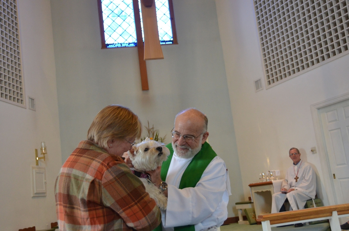 animal blessing 2.jpg