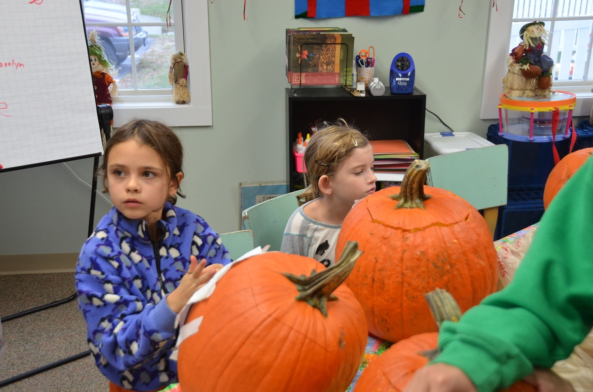 pumpkins 8.jpg