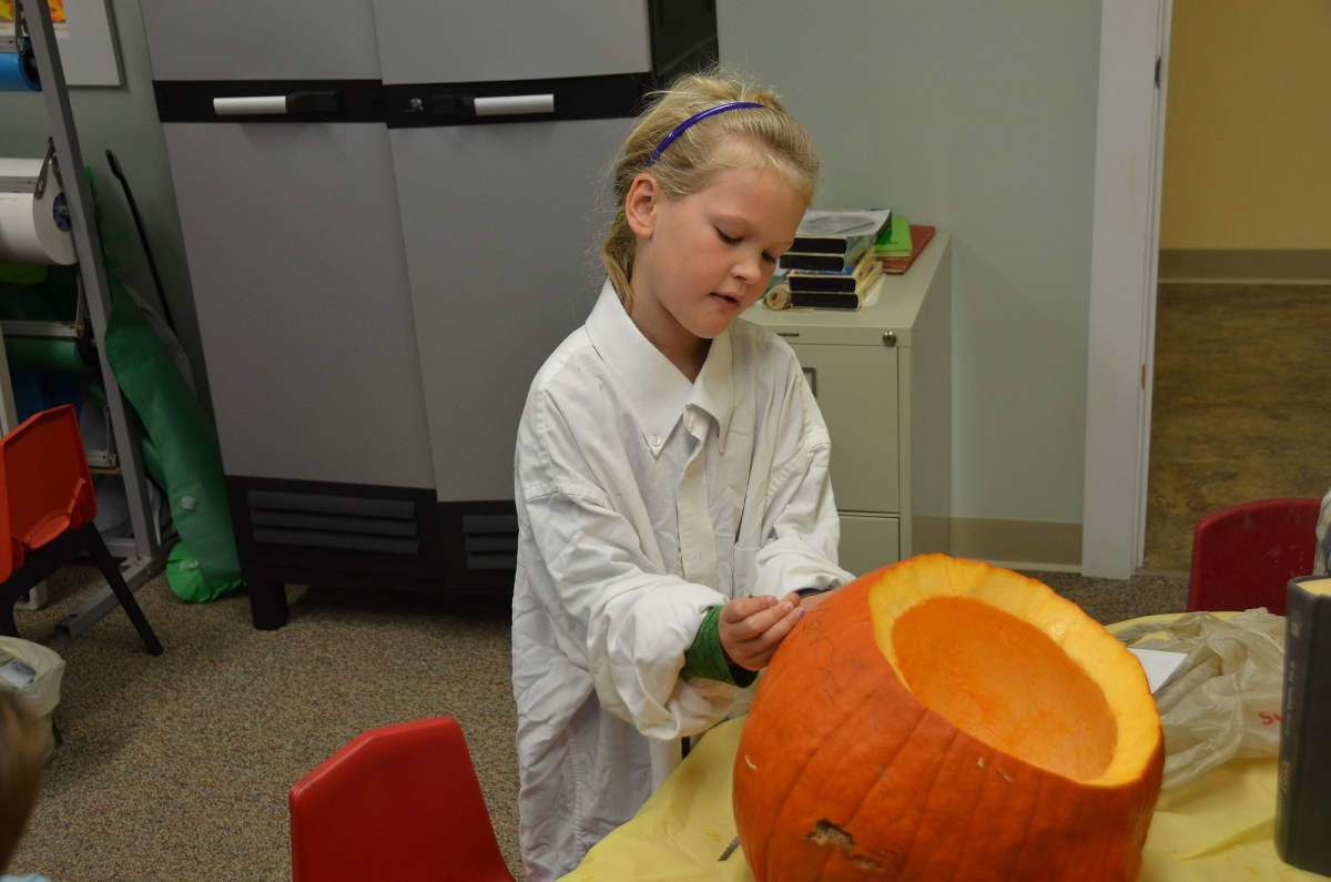 pumpkins 9.jpg