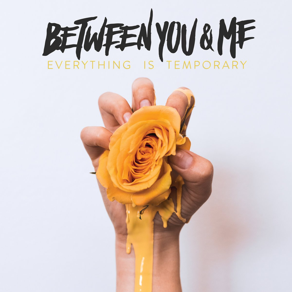 Between You & Me - Everything is Temporary   Piper Payne   Hopeless Records