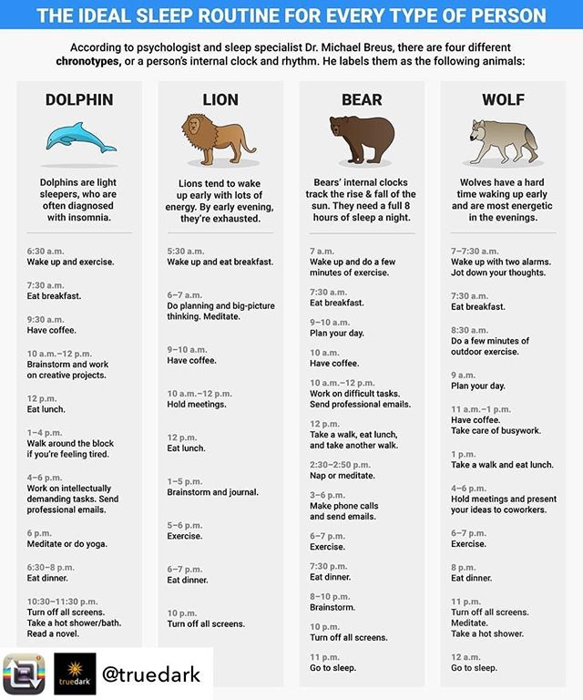 I'm a 🐻 ... you ? #Repost from @truedark - What's your chronotype? Tell us in the comments below using the appropriate emoji. 😎 • • 📸: @thesleepdoctor