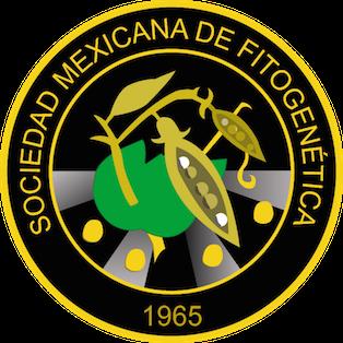 logo SOMEFI_negro.png
