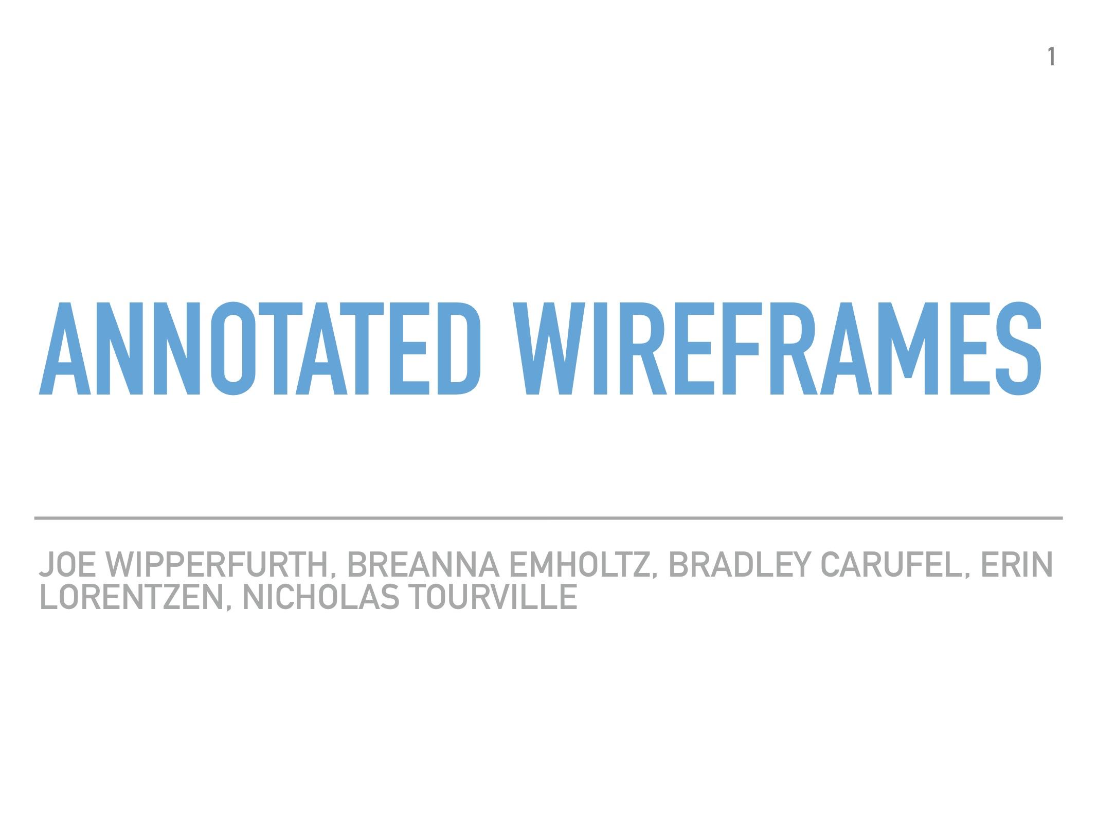 AnnotatedWireframes1.jpg