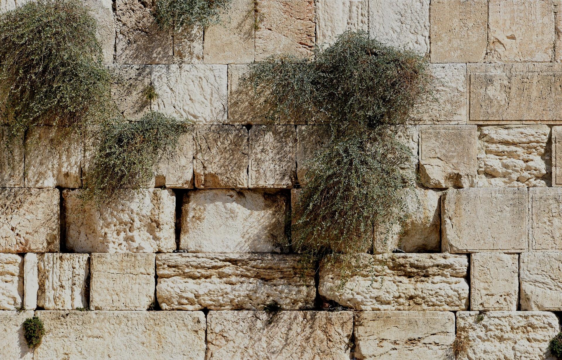 Lamentations - Bible Studies, Messages, Papers
