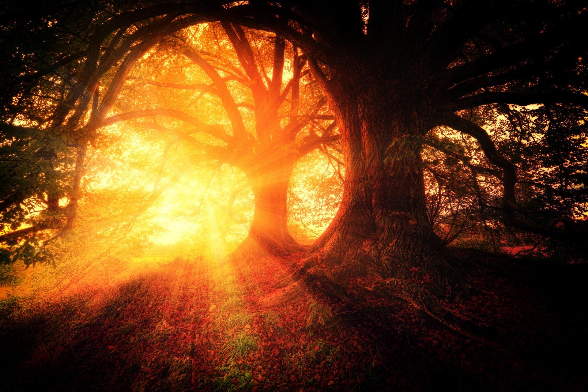 Christian Restorative Justice and God's Creation Order -