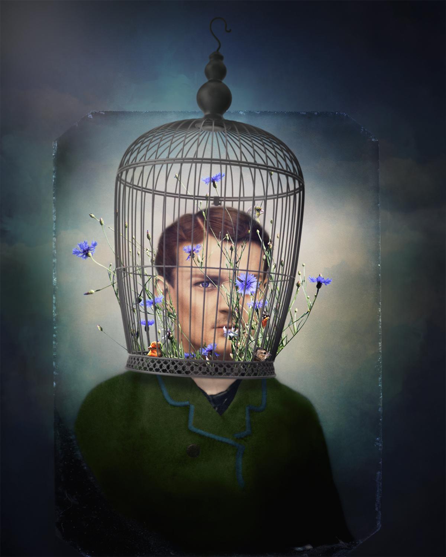 TheCornflower_Talking_Flower_by_Laura_Cole_Web.jpg