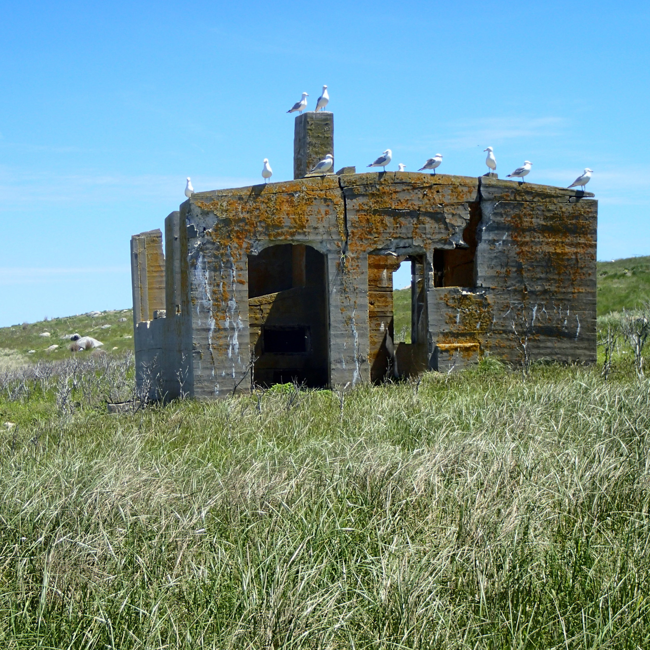 More than a century has taken its toll on the leper colony's laundry building on the windswept Northwest shore of the island. Many seafarers passing through Buzzards Bay are unaware of the sad story behind the historic ruins.
