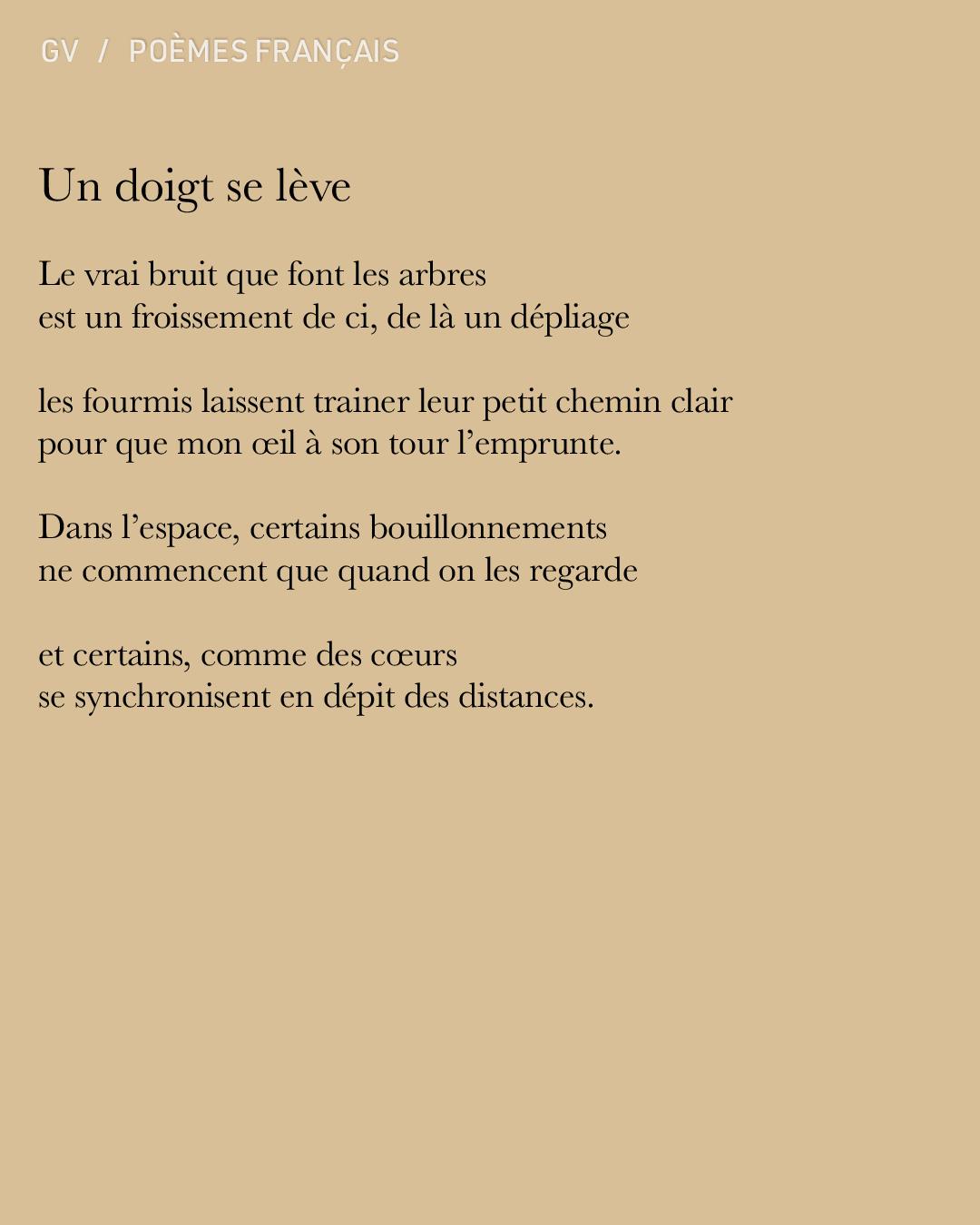 Gvion-PoemesF-UnDoigt.jpg
