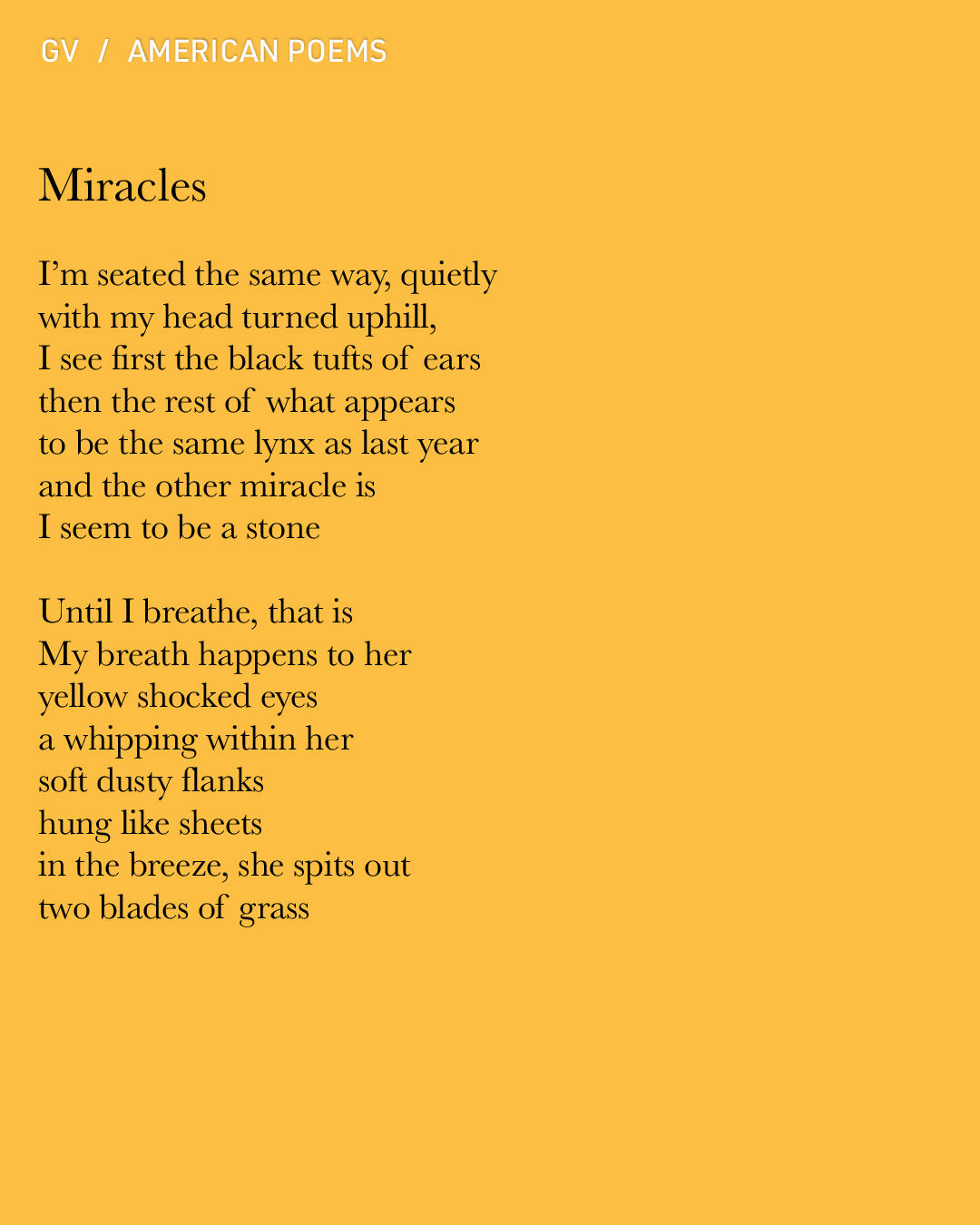 Gvion-PoemsA-Miracles.jpg