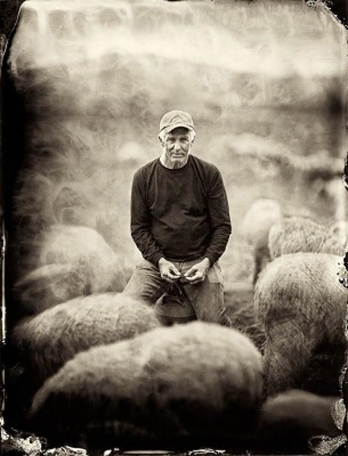 Eugene Wyatt - Our FounderIn 1990, just four years after Australia lifted its ban on exporting Merino genetics, Eugene Wyatt flew to Melbourne and selected five world-class Saxon Merino rams to serve as the foundation of his flock. A first-generation, self-taught farmer, Eugene spent the next 28 years cultivating one of the most remarkable flocks in the United States. His mission was to produce the gold standard of Saxon Merino wool, and he stayed true to that mission until his death in May 2018.