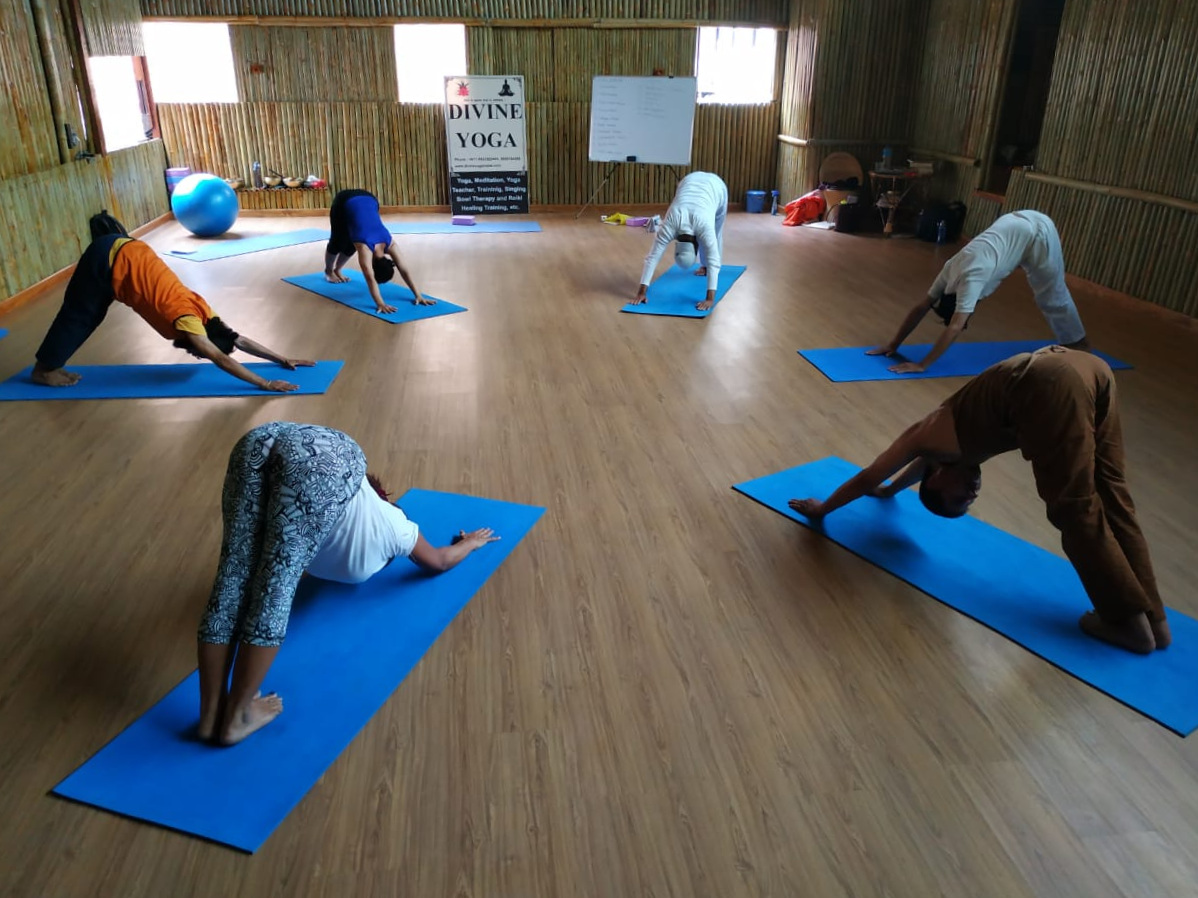 Divine yoga#YTTC.jpg