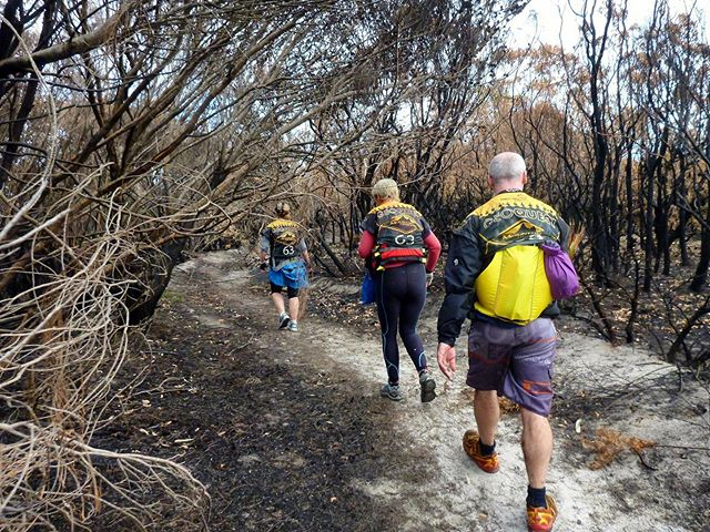 Fire management strategies don't make for the most beautiful trails but very essential. _  #adventureracing #adventure #traillife #getoutside #outdoorlife #explore #getoutdoors #mountainbike #mtb #trailrun #paddle #kayak #run #xpd #arworldseries #hellsbells #24hr #geoquest #48hr #expedition #visitnsw #southcoastnsw #husky #terranova24