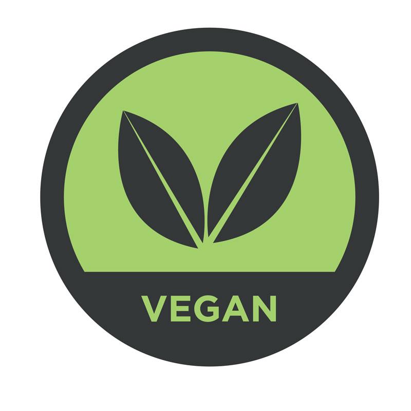Vegan---Web-Food_allergies_colour-2.jpg