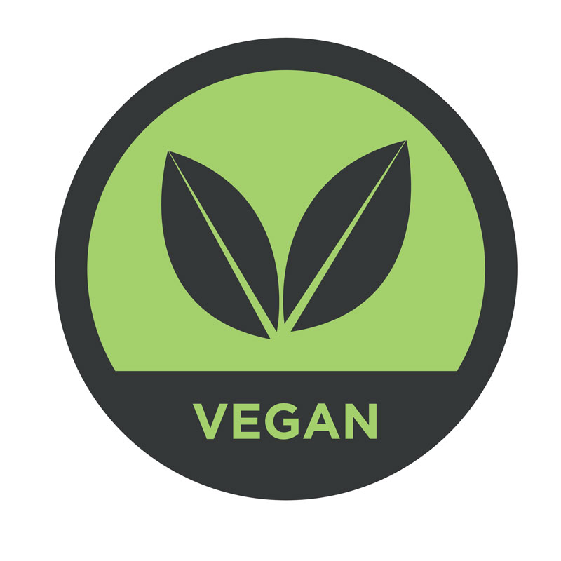 Vegan---Web-Food_allergies_colour-2.jpg
